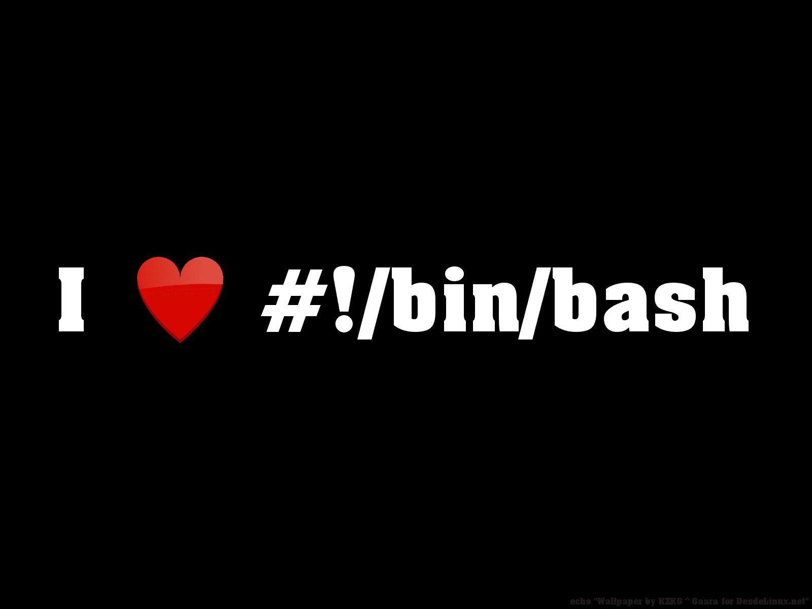 i-love-bin-bash_by-kzkggaara