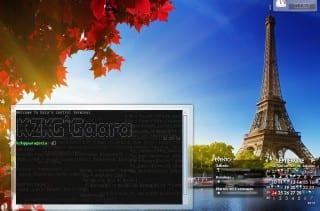 plasmoid-terminal-full-screenshot