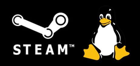 amd-steam-logo