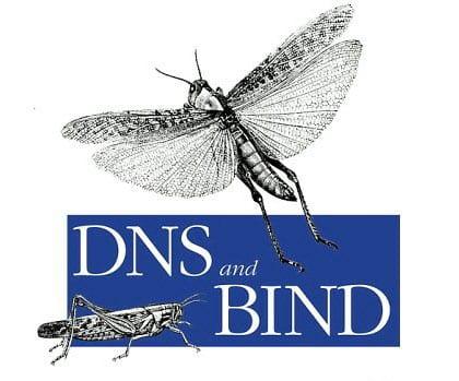 bind9
