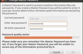 Contraseñas Firefox - IV