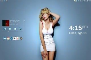 Canaima 4.0 KDE 4.8 tema Invisible Iconos Ardis