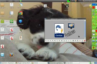Usando PintaScreen